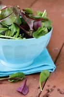 meng salade (rucola, ijsberg, rode biet) in een kom foto