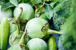 aubergine en groene kruiden foto