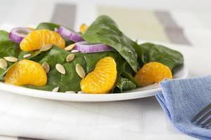 spinazie mandarijnsalade iv foto