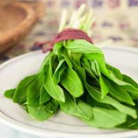 verse groene wilde knoflook foto