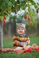 kleine schattige jongen met de oogst foto
