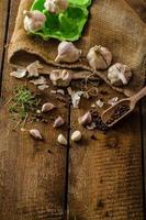 binnenlandse bio-knoflook - Tsjechisch, kruiden en verse microgreens foto