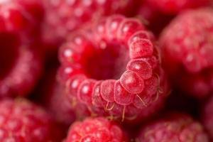 frambozen fruit achtergrond foto