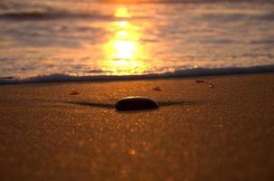 zonsondergang rock foto
