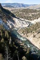 yellowstone rivier foto
