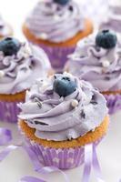 bosbessen en lavendel cupcakes foto