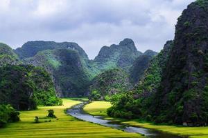 rijstveld en rivier foto