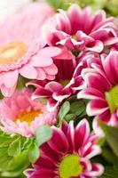 kleurrijke zomerbloemen foto