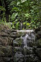 natuurlijk bronwater foto