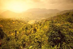 prachtig Aziatisch landschap foto