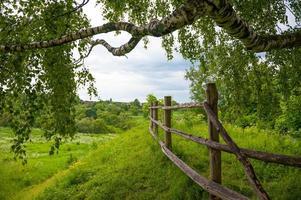 typisch Russisch landschap foto