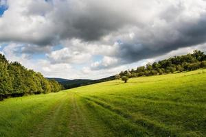 landschap foto