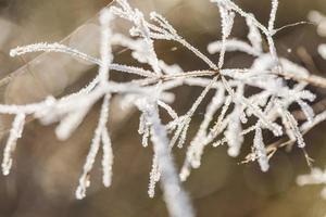 poëtische winter
