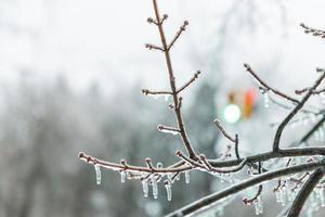 winter stoplicht