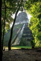 Maya-ruïnes in Tikal, nationaal park. reizend guatemala. foto