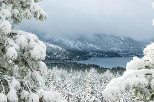 tahoe sneeuw foto