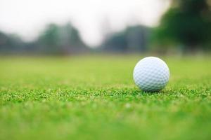 golfbal op de green foto
