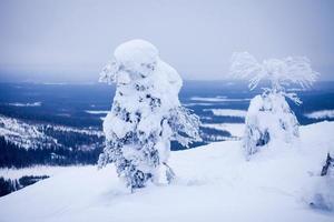 mooie levendige zonnige Scandinavische winterlandschap van skiresort foto