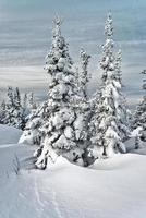 skigebied Sheregesh, regio Kemerovo, Rusland. foto