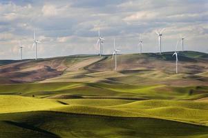 steptoe butte windturbines foto