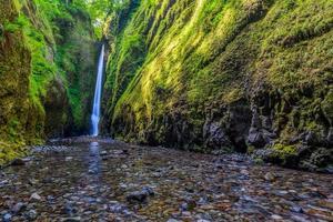 prachtige waterval en canyon in oneonta kloof trail, oregon foto