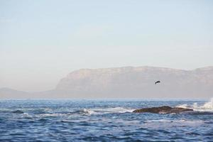 prachtige zee landschap in Zuid-Afrika