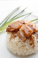 Krokant varkensvlees met rijst geïsoleerd op een witte achtergrond