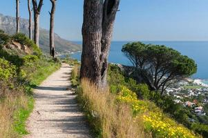kustlandschap met grindpad en bomen foto