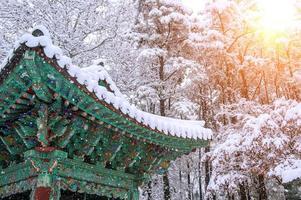 landschap in de winter met dak van gyeongbokgung en vallende sneeuw foto