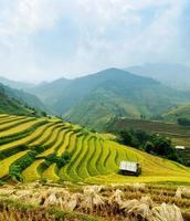 rijstvelden mu cang chai, vietnam foto