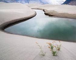 zandduinen van nubra vallei. himalaya, india foto
