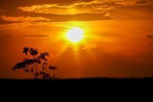 zonsondergangen foto