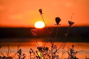 voor zonsondergang foto