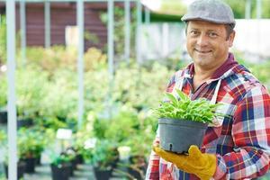 man met plant foto