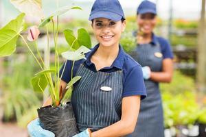 jonge vrouwelijke tuinman die werkt in de kwekerij foto