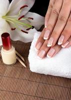 vrouwelijke zachte handen met prachtige french manicure foto