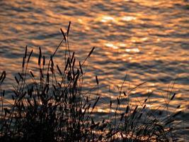silhouetten bij zonsondergang foto