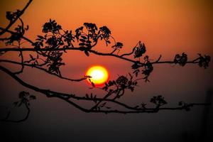 Zuid-Afrikaanse zonsondergang foto