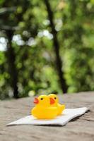 heerlijk van gele badeend foto