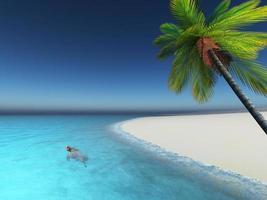 3d geef van schildpad in het overzeese palmboomstrand terug foto