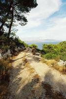 pad op het eiland foto