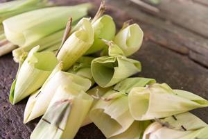 bladwikkelaar voor het maken van tamales foto