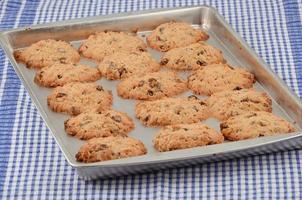 warm gebakken koekjes foto
