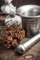 oud geneeskrachtig recept van kruiden foto