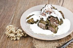Turkse keuken yaprak sarma met yoghurt