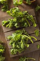 biologische rauwe groene broccoli rabe rapini foto