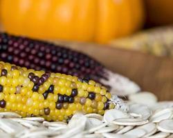 thanksgiving stilleven