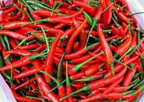 chili peper rood foto