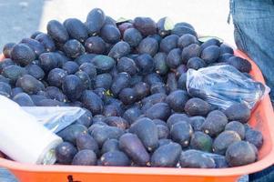 avocado haas variëteit gestapeld in een kruiwagen foto