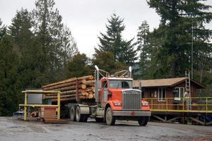 houtvrachtwagen bij molen foto